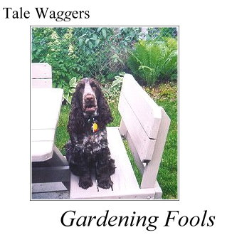Title: Tale Waggers - Gardening Fools Photo: Duncan on the picnic table - where he does not belong