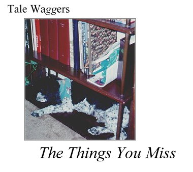 Title:  Tale Waggers - The Things You Miss  Photo:  Arthur sleeping on the bookshelf