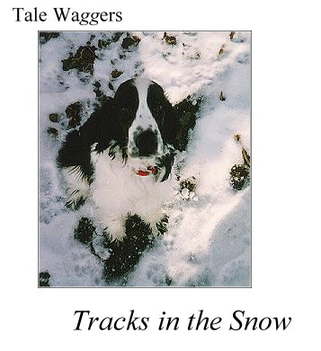 Tale Waggers - Tracks in the Snow