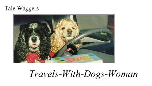 Title:  Tale Waggers - Travels-with dogs-woman  Picture: Two dogs at the wheel of a car